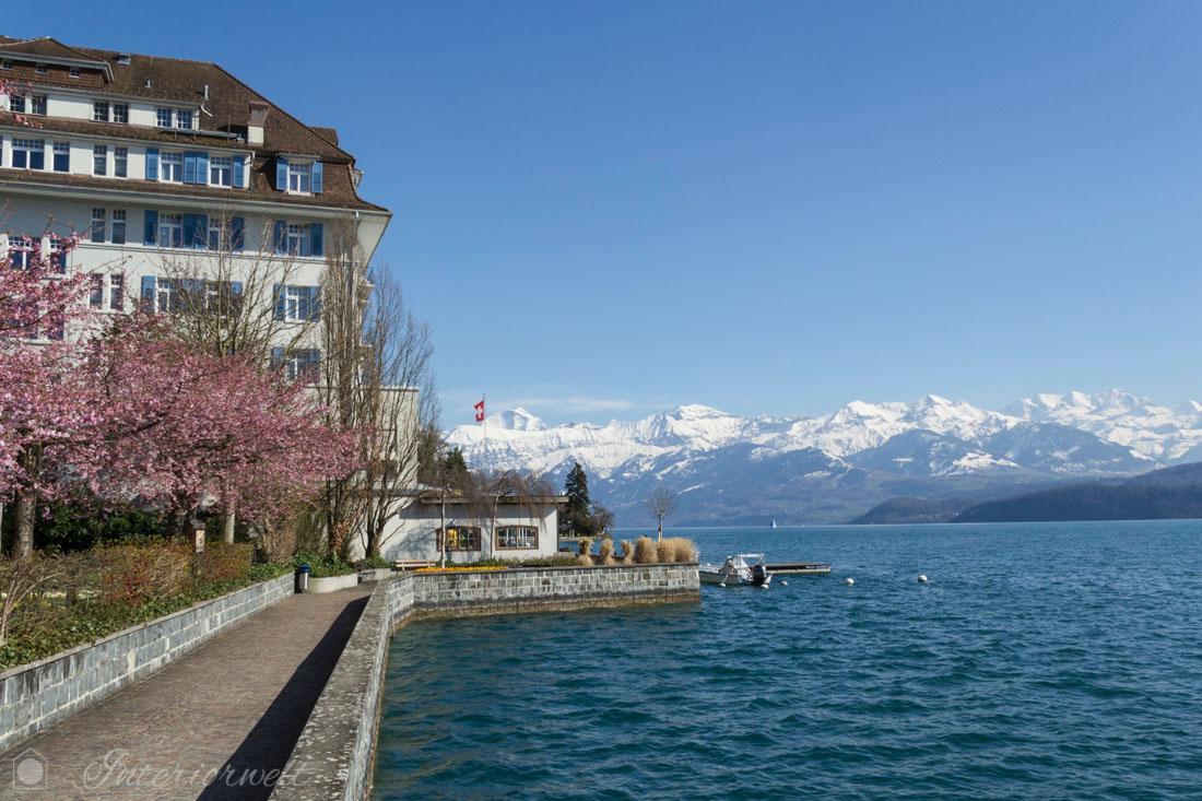 Hotel mit See- und Bergblick Thunersee